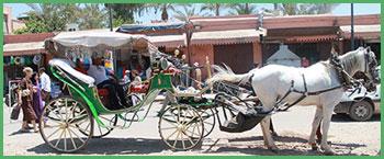 Carrozza tipica di Marrakech