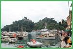 La vegetazione di Portofino color verde intenso