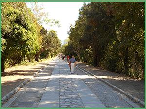 Viale che porta a Villa San Martino